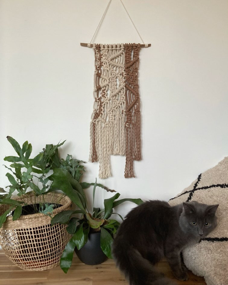 Louie the Cat next to a macramé wall hanging