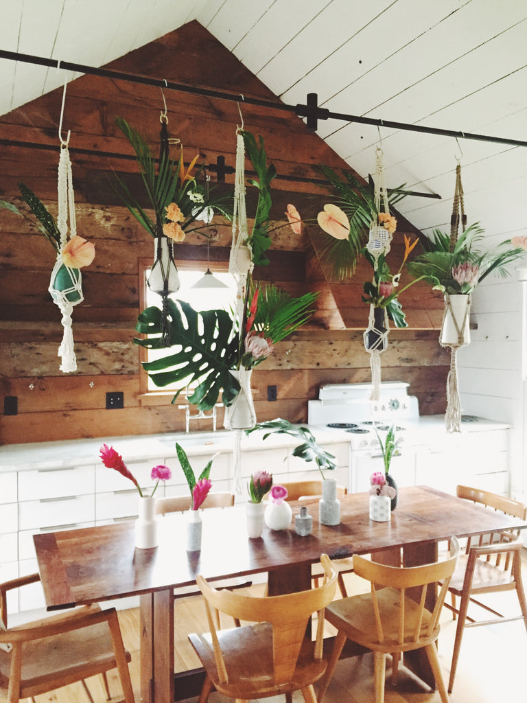 Modern Macramé Blog Nature Channel Plant Hanger DIY Beginner macrame