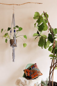 macrame plant hanger DIY pattern download by Modern Macrame
