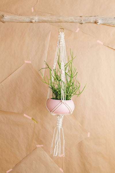 DIY PLANT HANGER KIT