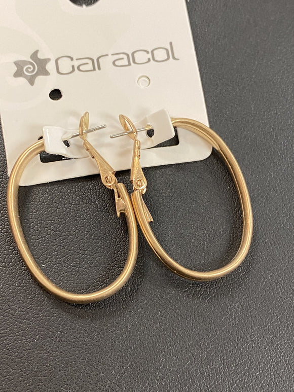 Caracol Metal Oval Earrings - 2404