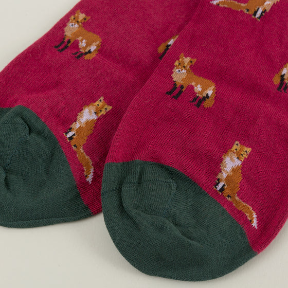 Scott Nichol Farnley Foxes Socks Red Image #1
