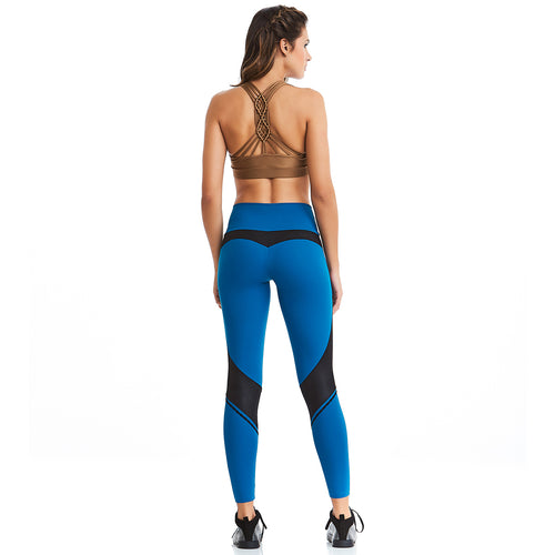 EMANA® Urban Luxury Black and Blue Leggings | Technology Meets Active Wear | Palisa Dance Boutique