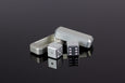 D6 Dice - Silver - Select Your Dice & Case - GRAVITY DICE