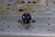 D12 - Individual Polyhedral Dice for RPGs - GRAVITY DICE