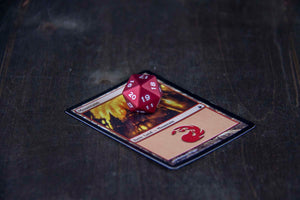 Magic The Gathering Special - D20 Turndown