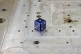 D6 Dice - Navy Blue - Select Your Dice & Case - GRAVITY DICE