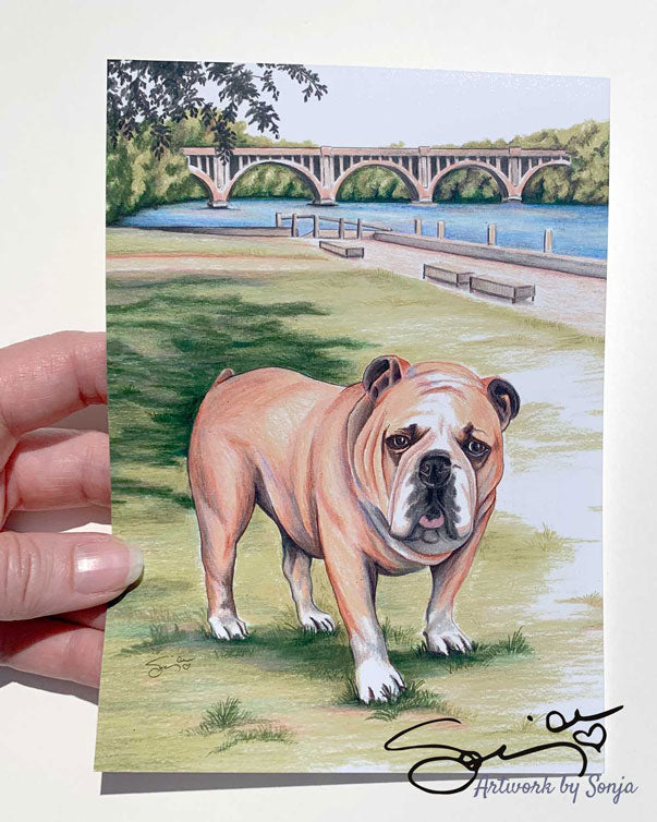Bulldog at City Dock Print