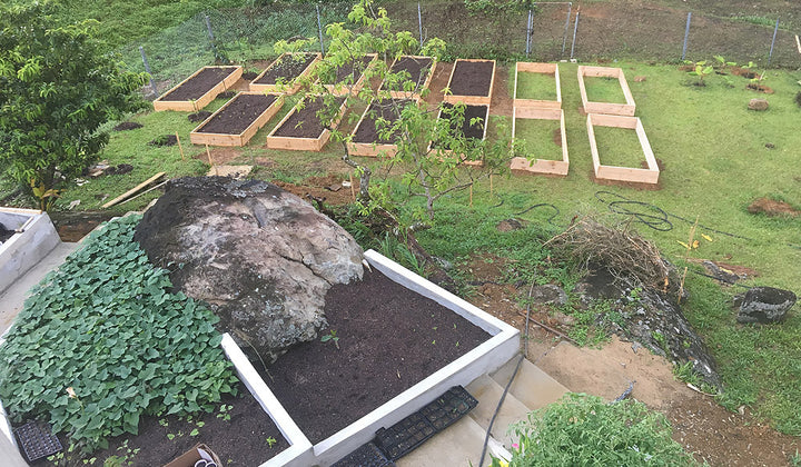 Wood Garden Boxes in our Permaculture Urban Farm