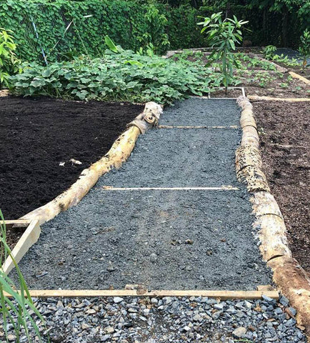 Root vegetable beds