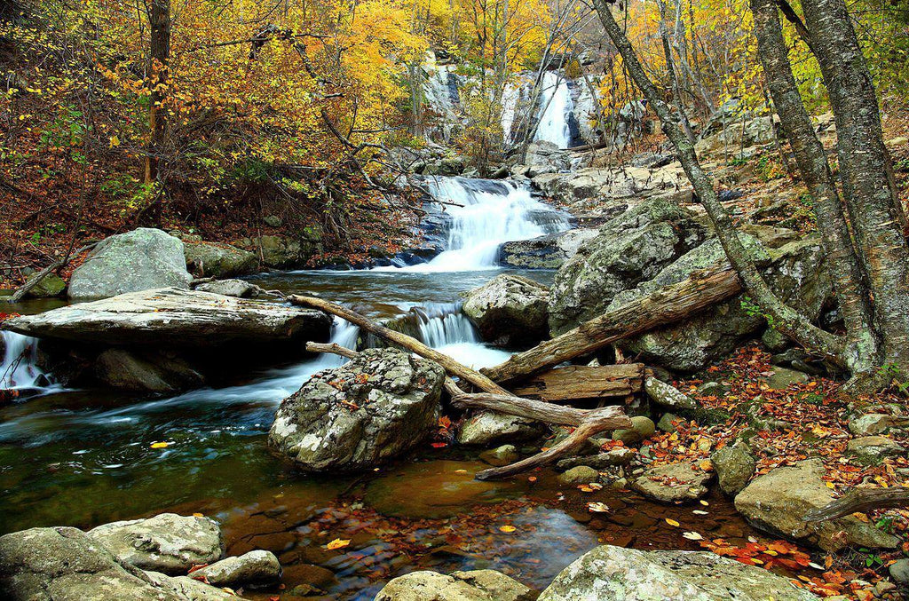 Autumn Waterfall, Virgina - Art 4 Charities, LLC