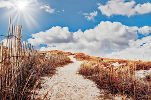 Beach Path - Art 4 Charities, LLC