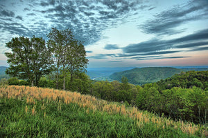 Bluestone Valley, West Virginia - Art 4 Charities, LLC