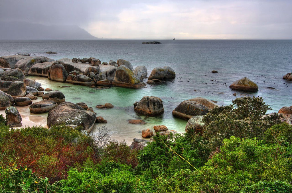 Bounders Bay, South Africa - Art 4 Charities, LLC