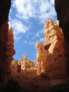 Bryce Canyon Hoodoos, Navajo Loop, Utah - Art 4 Charities, LLC