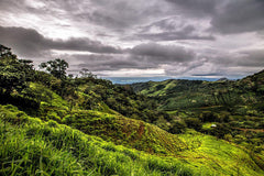 Green pastures on Nicoya Peninsula, Costa Rica