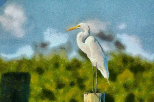 Majestic Egret - Art 4 Charities, LLC