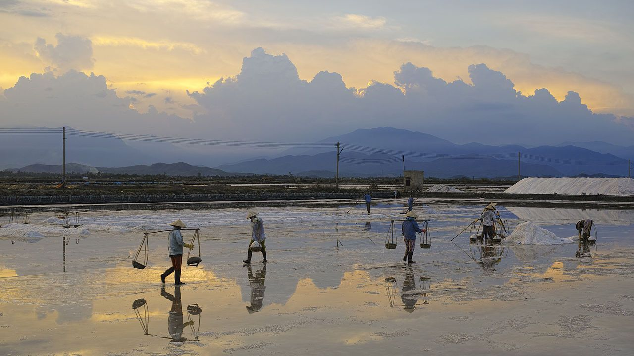 Making Salt From Sea Water, Vietnam I