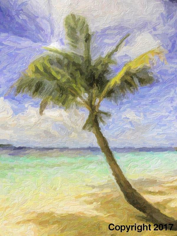 Palm On Beach - Art