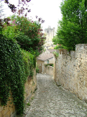 Path Down The Hill, France