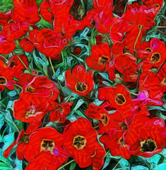 Red Flowers In Holland - Art Inspired by Vincent van Gogh