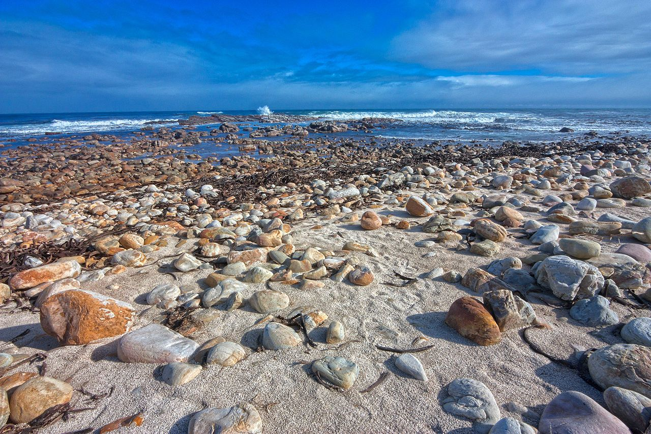Rocky Beach, Cape of Good Hope, South Africa