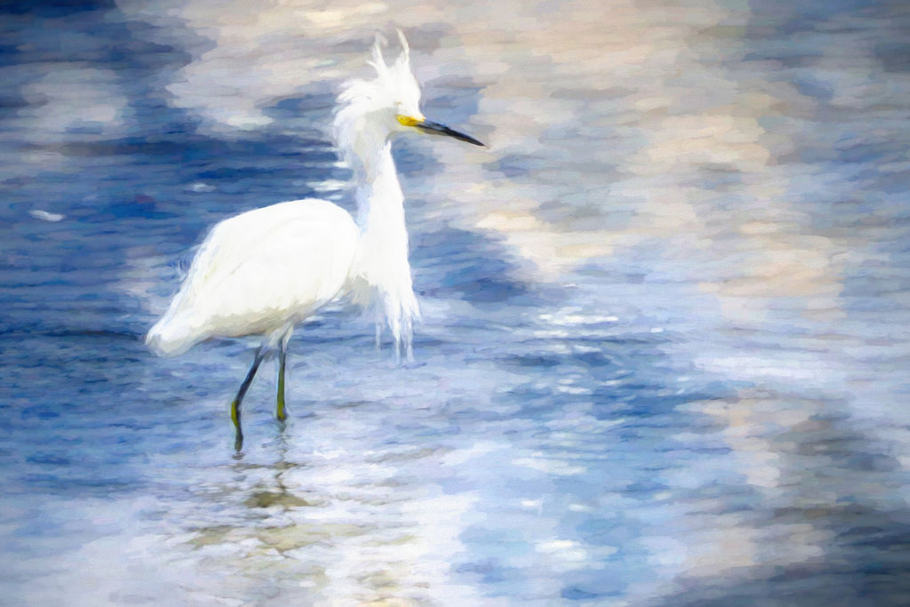 Snowy Egret in Pond - Art 4 Charities, LLC