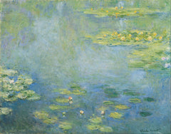 Water Lilies  (1906)