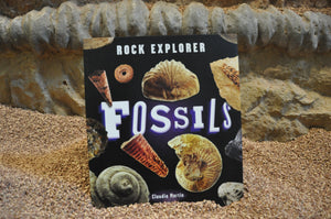 Rock Explorer: Fossils