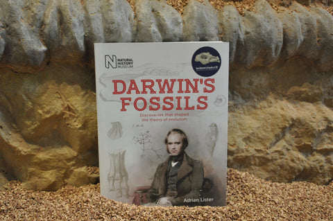 Darwin's Fossils- OUT OF STOCK
