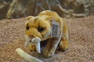 Authentic Sabre Toothed Cat