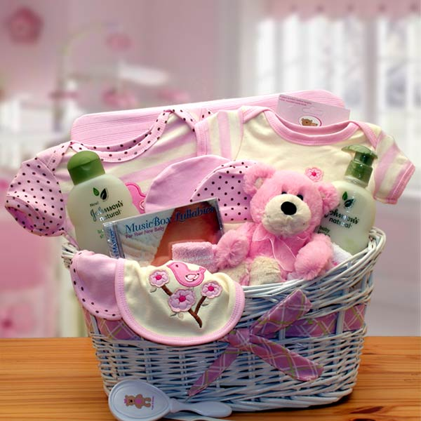 Stork baby gift baskets baby girl baskets gift baskets for baby deluxe organic new baby gift basket pink gbds5 negle Gallery