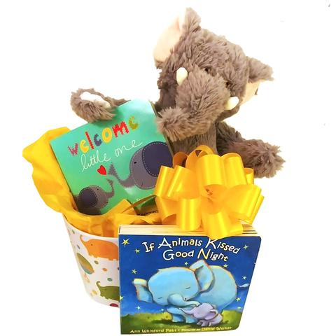Safari Jungle Boy Gift Basket (#BBC182)