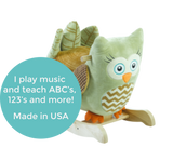 Owliver Green Owl Rocker (#RB24) - StorkBabyGiftBaskets - 2