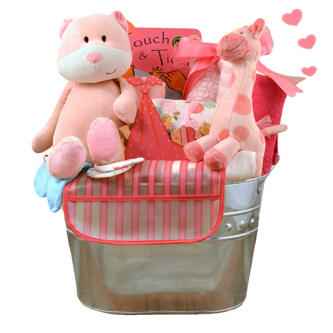 Welcome Home Starter Gift Basket - Boy (#CBB25)