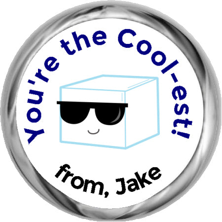 Cool Ice Cube - Party Sticker Favors (#HKS356)