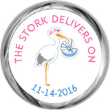 The Stork Delivers Sticker - Personalized Kisses Candy For Baby Shower (#HKS30) - StorkBabyGiftBaskets - 1