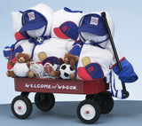 Welcome Wagon Deluxe For Twin Boys (#BGC120) - StorkBabyGiftBaskets