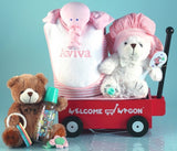 Baby Girl Welcome Wagon Gift Set (BGC26) - StorkBabyGiftBaskets - 1
