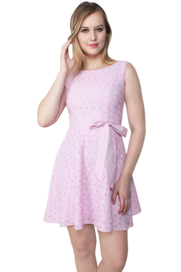 Preslee Embroidered Cotton Swing Dress