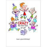 Doodlecards Funny Son in Law Birthday Card - Medium