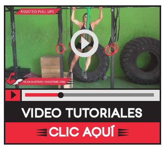 Video Tutoriales Bold Tribe