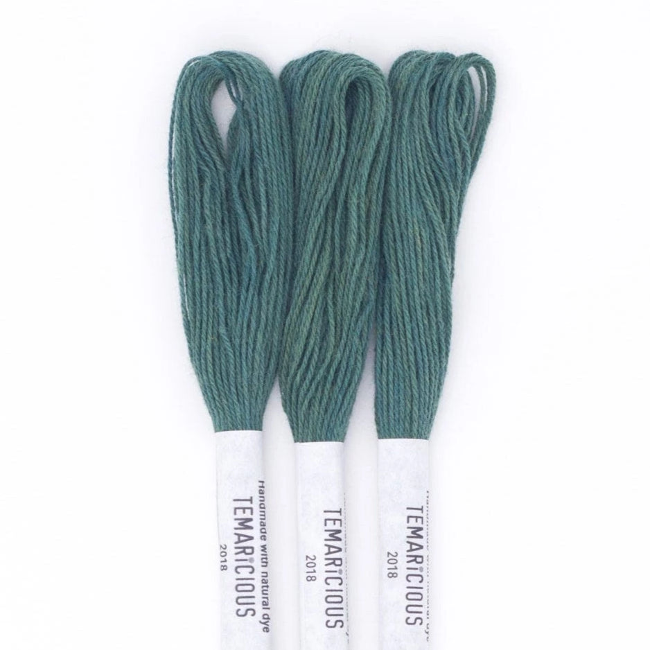 Temaricious #DG7 - hand dyed embroidery thread - green - single 12.5m cotton skein
