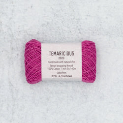 Temaricious embroidery thread P19