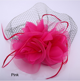 Hair Accessories- Veil Feather Women Hairpiece