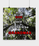Posters-And God said let there be Grandmas - Trees Forest Scenery