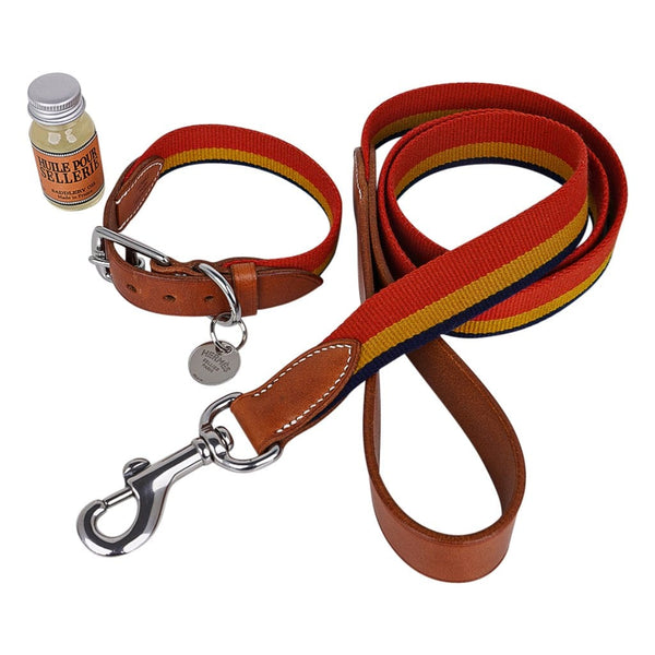 Hermes Rocabar Dog Collar Medium Model w/ Leash New w/ Box