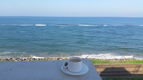Sri Lanka, Ocean View, Tea Cup
