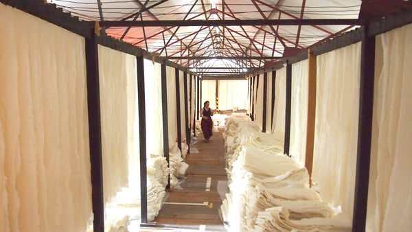 Natural rubber sheets drying, Sri Lanka, rubber factory, natural rubber, fair rubber, olli, #fairrubber #olliworldwide #womenentrepreneurs