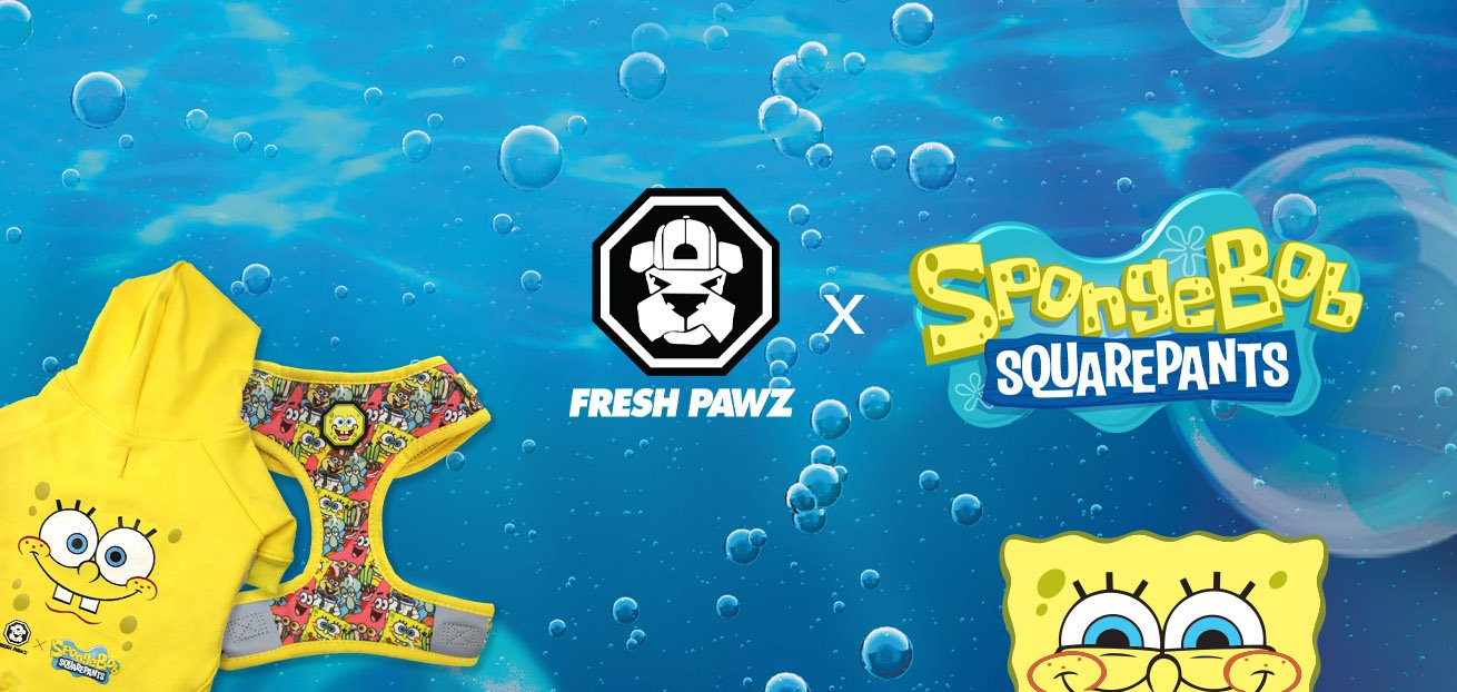 Spongebob x Fresh Pawz Collab